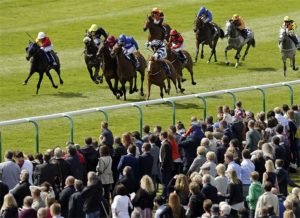 Trigger's Tips - 3.45 Newmarket, Wednesday, October 24