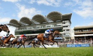 Top Facts About Horseracing that You need to Know